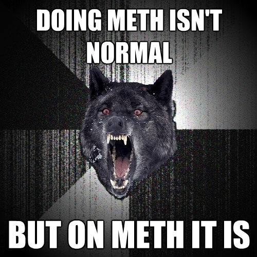 doing meth isnt normal but on meth it is - Insanity Wolf
