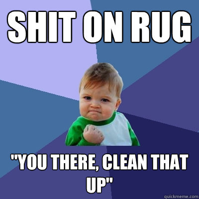 shit on rug you there clean that up - Success Kid