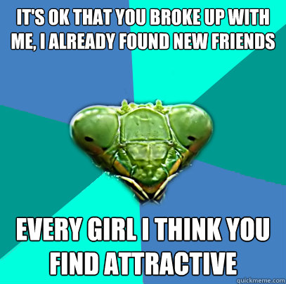 its ok that you broke up with me i already found new frien - Crazy Girlfriend Praying Mantis