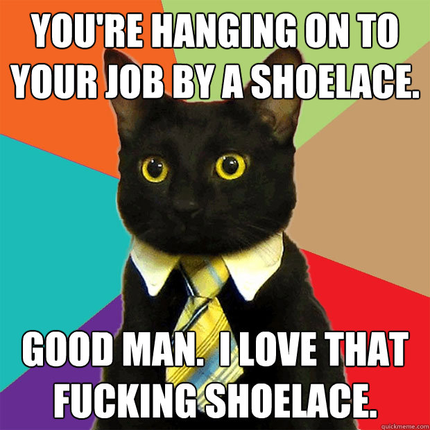 youre hanging on to your job by a shoelace good man i lo - Business Cat