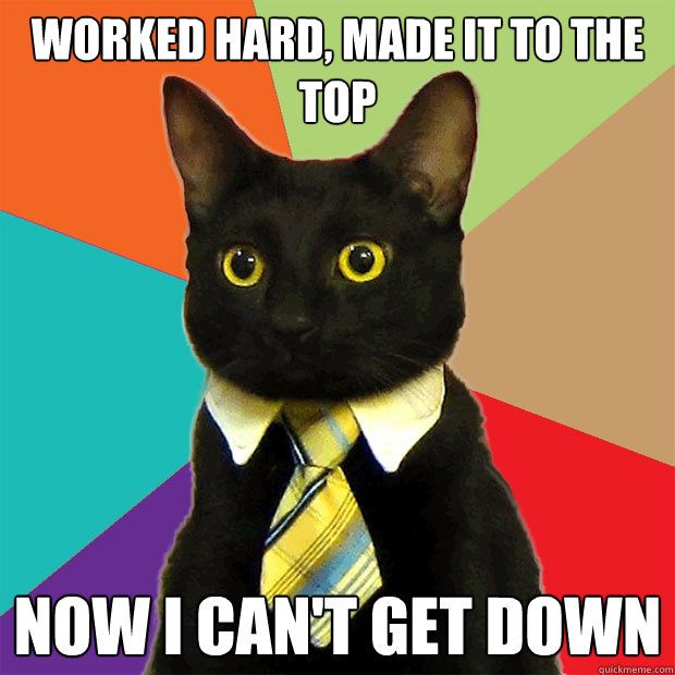 worked hard made it to the top now i cant get down - Business Cat