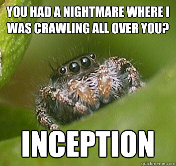 you had a nightmare where i was crawling all over you incep - Misunderstood Spider