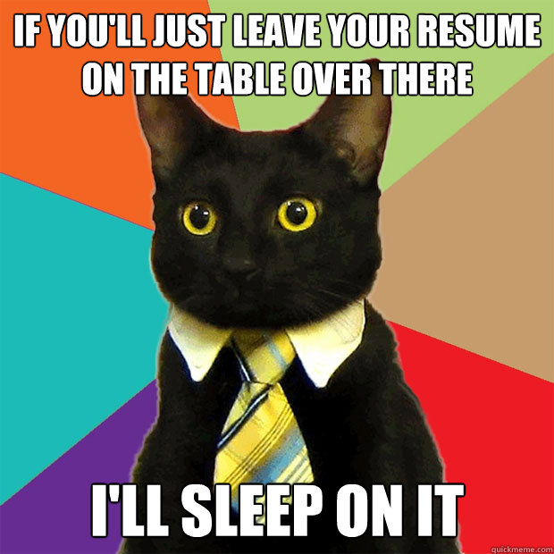 if youll just leave your resume on the table over there il - Business Cat