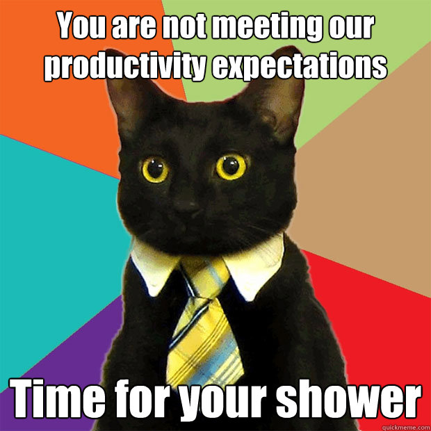 you are not meeting our productivity expectations time for y - Business Cat