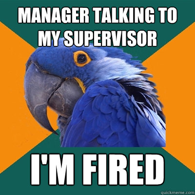 manager talking to my supervisor im fired - Paranoid Parrot