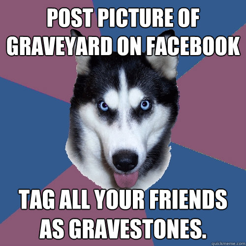 post picture of graveyard on facebook tag all your friends a - Creeper Canine