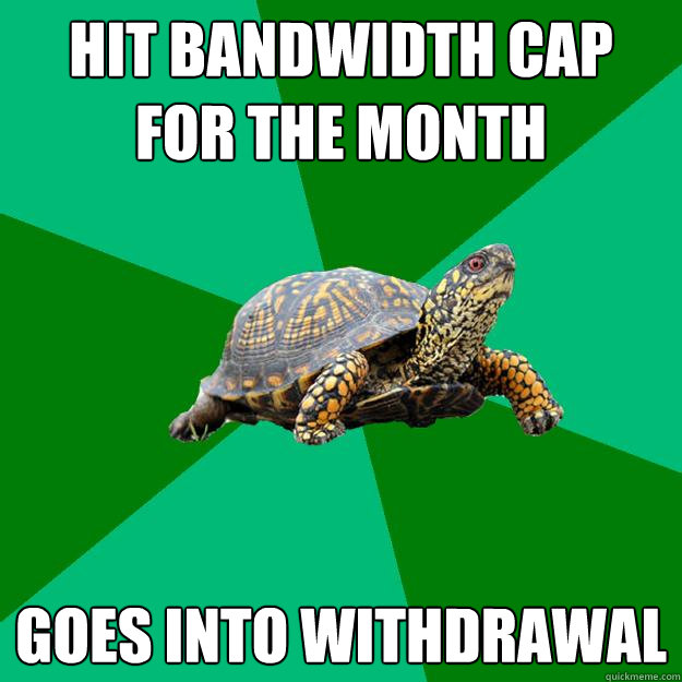hit bandwidth cap for the month goes into withdrawal - Torrenting Turtle