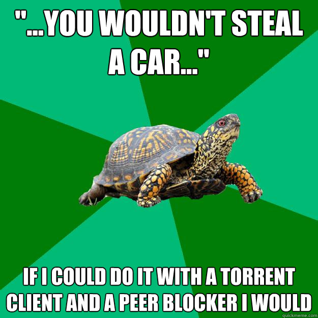 you wouldnt steal a car if i could do it with a tor - Torrenting Turtle
