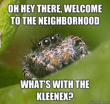 oh hey there welcome to the neighborhood whats with the kl - Misunderstood Spider