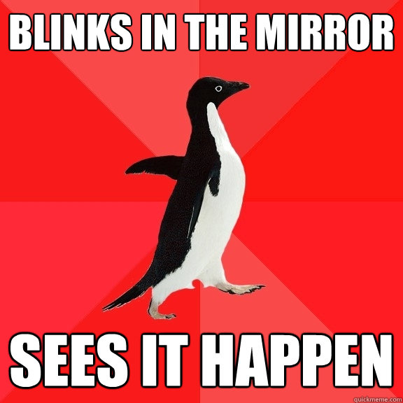 blinks in the mirror sees it happen - Socially Awesome Penguin