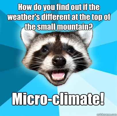 how do you find out if the weathers different at the top of - Lame Pun Coon