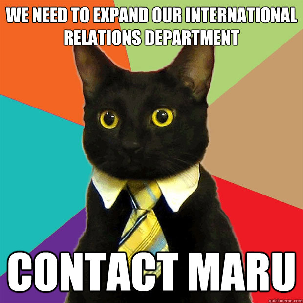 we need to expand our international relations department con - Business Cat