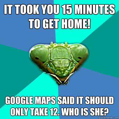 it took you 15 minutes to get home google maps said it shou - Crazy Girlfriend Praying Mantis