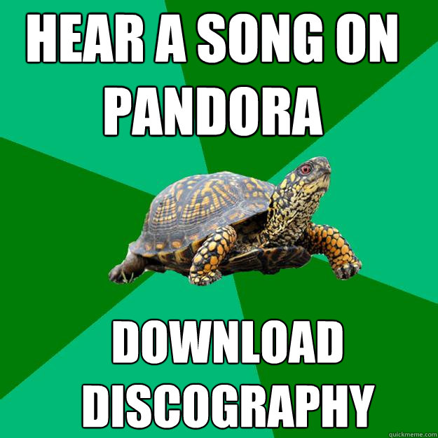 hear a song on pandora download discography - Torrenting Turtle