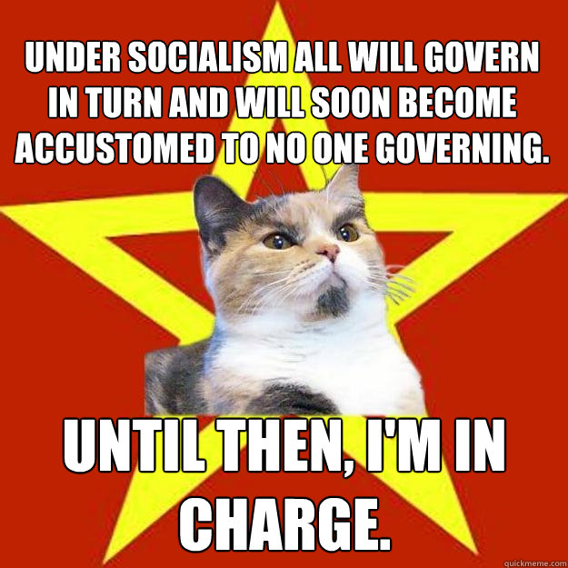 under socialism all will govern in turn and will soon become - Lenin Cat