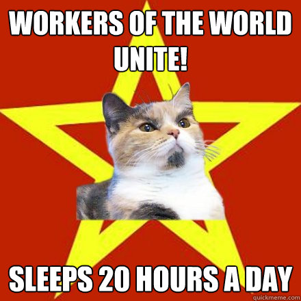 workers of the world unite sleeps 20 hours a day - Lenin Cat
