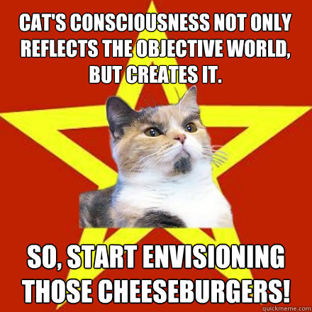 cats consciousness not only reflects the objective world b - Lenin Cat