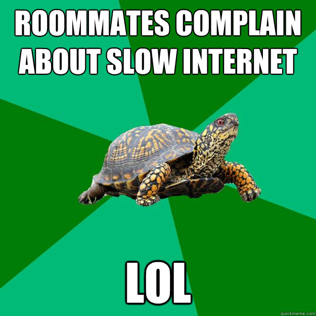 roommates complain about slow internet lol - Torrenting Turtle