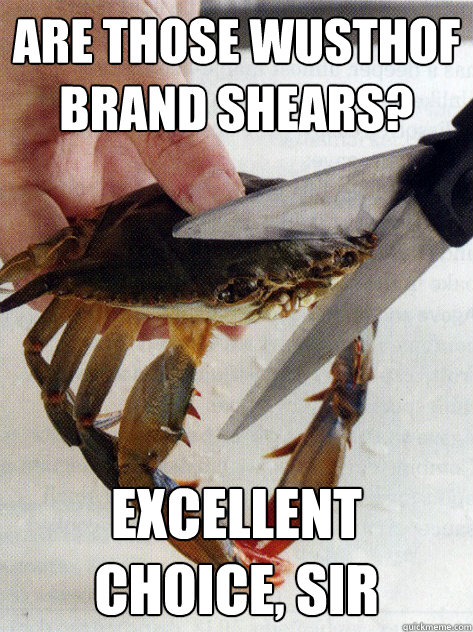 are those wusthof brand shears excellent choice sir - Optimistic Crab