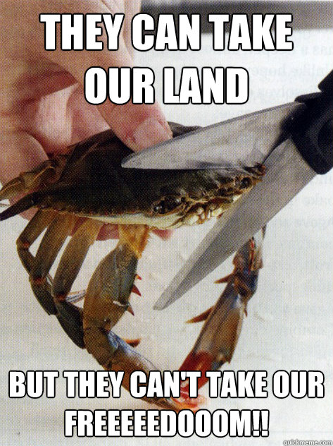 they can take our land but they cant take our  - Optimistic Crab