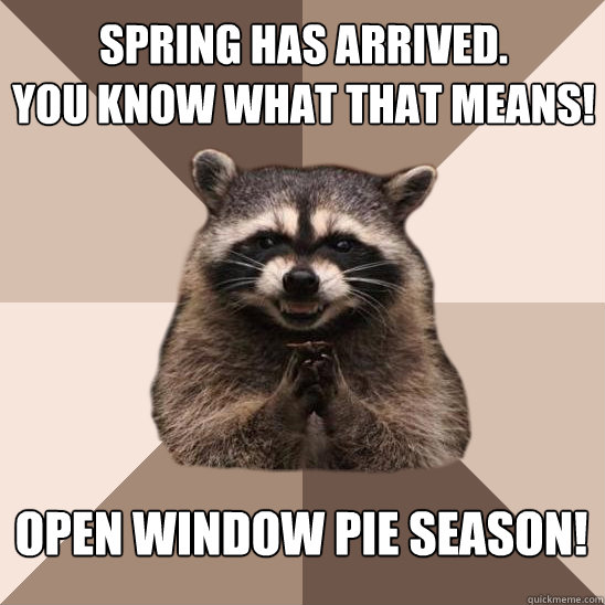 spring has arrived you know what that means open window pi - Evil Plotting Raccoon