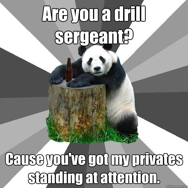 are you a drill sergeant cause youve got my privates stand - Pickup-Line Panda