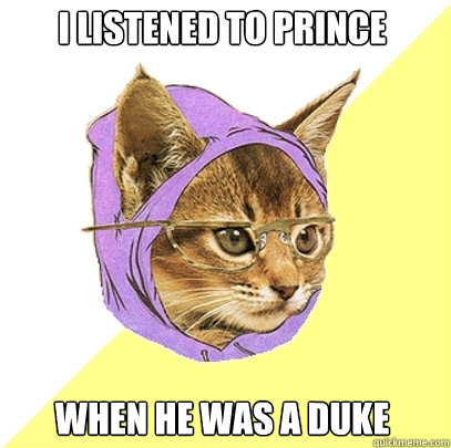 i listened to prince when he was a duke - Hipster Kitty