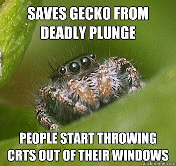 saves gecko from deadly plunge people start throwing crts ou - Misunderstood Spider