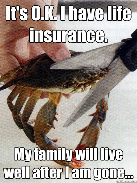 its ok i have life insurance my family will live well af - Optimistic Crab