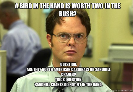 a bird in the hand is worth two in the bush question are t - Schrute