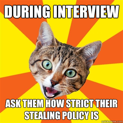 during interview ask them how strict their stealing policy i - Bad Advice Cat