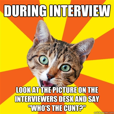 during interview look at the picture on the interviewers des - Bad Advice Cat