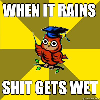 when it rains shit gets wet - Observational Owl