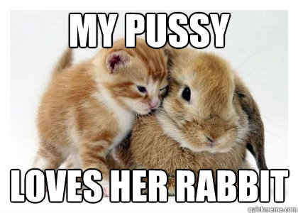 my pussy loves her rabbit - 