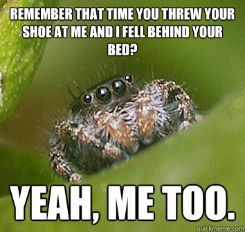remember that time you threw your shoe at me and i fell behi - Misunderstood Spider