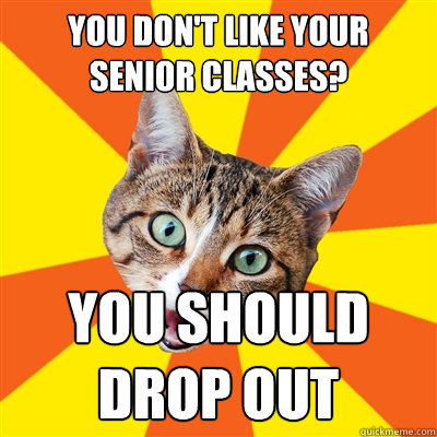 you dont like your senior classes you should drop out - Bad Advice Cat