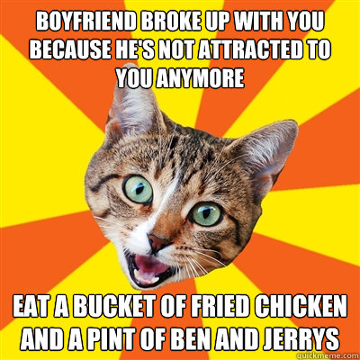 boyfriend broke up with you because hes not attracted to yo - Bad Advice Cat
