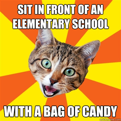 sit in front of an elementary school with a bag of candy - Bad Advice Cat