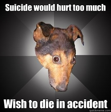 suicide would hurt too much wish to die in accident - Depression Dog