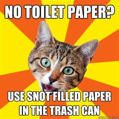 no toilet paper use snot filled paper in the trash can - Bad Advice Cat