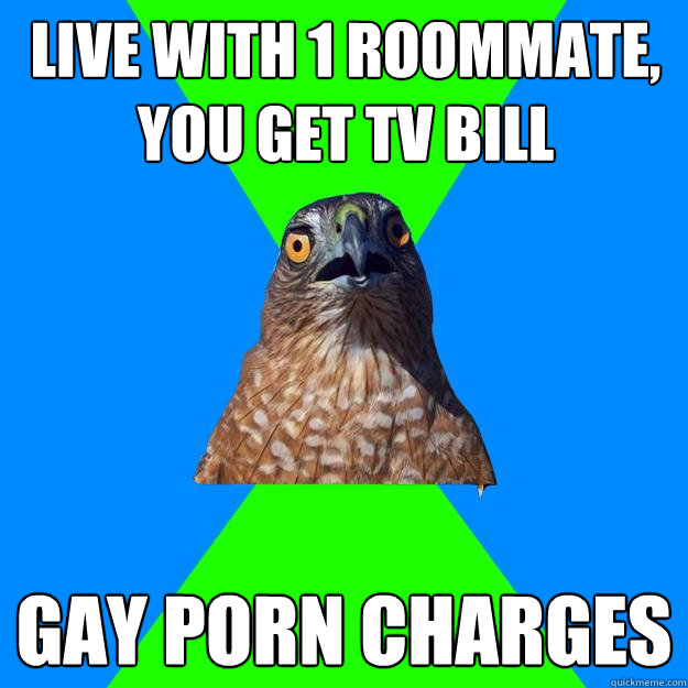 live with 1 roommate you get tv bill gay porn charges - Hawkward