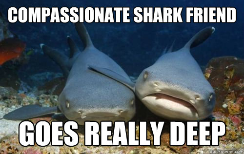 compassionate shark friend goes really deep - Compassionate Shark Friend