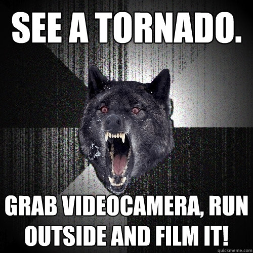 see a tornado grab videocamera run outside and film it - Insanity Wolf