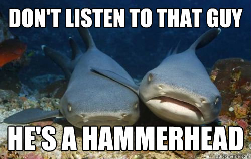 dont listen to that guy hes a hammerhead - Compassionate Shark Friend