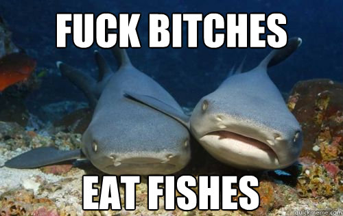 fuck bitches eat fishes - Compassionate Shark Friend