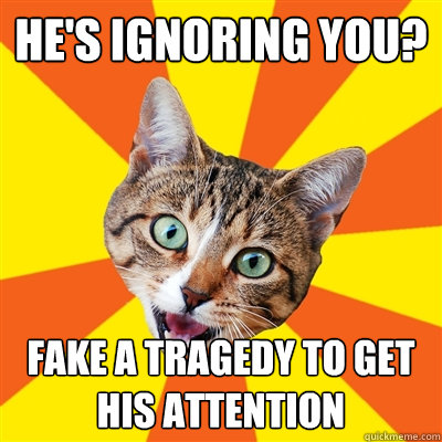 hes ignoring you fake a tragedy to get his attention - Bad Advice Cat