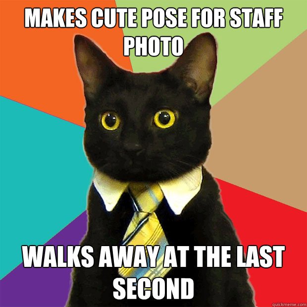 makes cute pose for staff photo walks away at the last secon - Business Cat