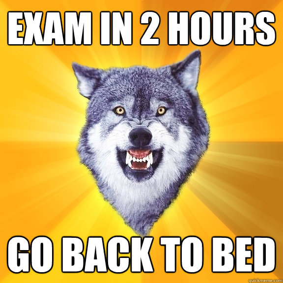 exam in 2 hours go back to bed - Courage Wolf