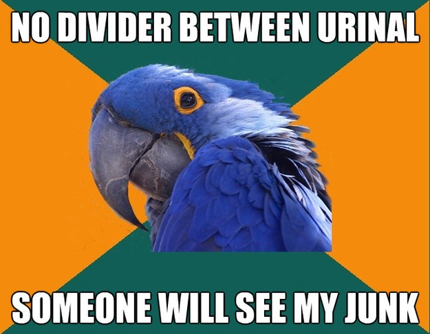no divider between urinal someone will see my junk - Paranoid Parrot