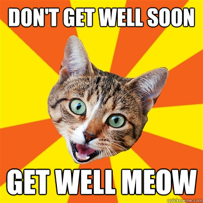 dont get well soon get well meow - Bad Advice Cat